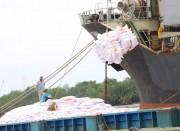 Xuất khẩu gạo tăng trở lại