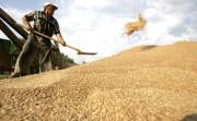 Hoa Kỳ khởi kiện Trung Quốc về trợ cấp nông nghiệp