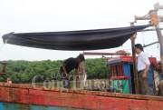 Nghệ An: Ngư dân vẫn khó!