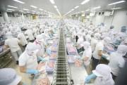 Ai Cập: Thị trường tiềm năng cho thủy sản Việt Nam