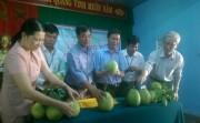 """Công bố nhãn hiệu tập thể """"Thanh trà Huế"""" – Hương Vân"""