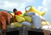 Xuất khẩu gạo: Thêm cơ hội từ thị trường trọng điểm