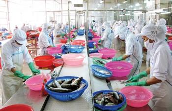 Hiệp định EVFTA: Vận hội cho nông nghiệp Việt Nam