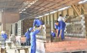 Khuyến công Lai Châu triển khai hiệu quả nhiều đề án