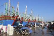 Nhu cầu vốn khai thác hải sản xa bờ tại Nghệ An tăng mạnh