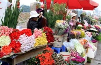 cho nong san da lat chi kinh doanh hang hoa dia phuong