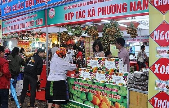 tao da khai thac tiem nang loi the vung tay bac