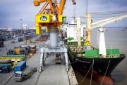 Hải Phòng: Thu thuế từ dịch vụ cảng đạt hơn 400 tỷ đồng