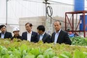 """Nghị quyết 130- """"Trụ đỡ"""" cho phát triển kinh tế - xã hội Bắc Giang"""