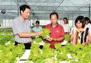 Thanh Trì xây dựng huyện nông thôn mới gắn với phát triển đô thị
