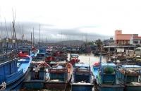 ung pho con bao so 5 tai san quy gia nhat la sinh mang cua nguoi dan