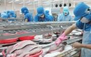 Xuất khẩu cá tra sang Trung Quốc: Tăng trưởng nhanh