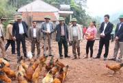 Xóa thôn, bản đặc biệt khó khăn- Quảng Ninh có cách làm khác biệt