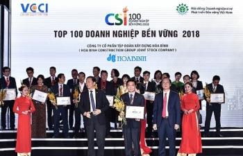 hoa binh nhan giai thuong doanh nghiep ben vung nam 2018