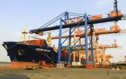 Năm 2016: Kết quả hoạt động cảng Hải Phòng tiếp tục tăng