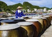 Nước mắm truyền thống của Hải Phòng bảo đảm an toàn thực phẩm
