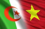 Cơ hội giúp doanh nghiệp Algeria hiểu hơn về thị trường Việt Nam