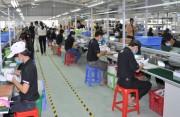 SME và việc sử dụng năng lượng hiệu quả