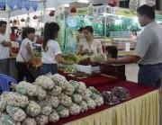 Hội chợ xuân Bình Thuận đạt doanh số trên 15 tỷ đồng