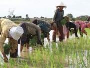 Thủ tướng yêu cầu tập trung vào 3 nhóm chính sách giảm nghèo
