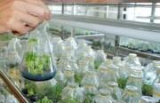Tạo thuận lợi nhất cho đầu tư các khu nông nghiệp công nghệ cao