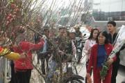 30 Tết, chen chân ở chợ hoa lớn nhất Hà Nội