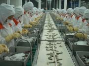 Đến năm 2025, Việt Nam phấn đấu xuất khẩu tôm đạt 10 tỷ USD