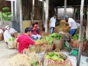 """Nông dân Tiền Giang kỳ vọng năm 2008 """"sản phẩm được bao tiêu, giá cả ổn định"""""""