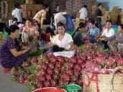 Yêu cầu làm rõ việc Ấn Độ tạm ngừng nhập khẩu một số nông sản Việt Nam