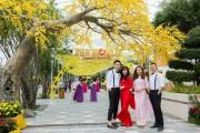 Vườn mai vàng rực rỡ mang Tết về Sun World Danang Wonders
