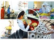 Tăng cường kiểm tra, giám sát tái cơ cấu doanh nghiệp nhà nước