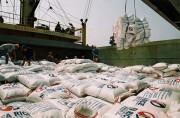 Đồng bộ các giải pháp đẩy mạnh hoạt động xuất khẩu gạo