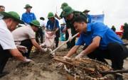 800 đoàn viên, thanh niên ra quân làm sạch biển Đồ Sơn