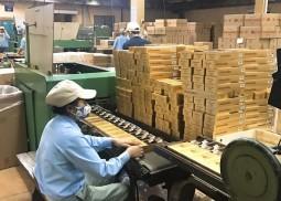 Công ty Thuốc lá Thanh Hóa: Thi đua vì sự phát triển của doanh nghiệp