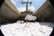 Algeria: Triển vọng cho xuất khẩu gạo Việt Nam