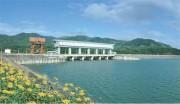 Thông tin về hiện tượng cá chết trên hồ chứa thuỷ điện Pleikrong trên địa bàn huyện Đak Hà, tỉnh Kontum