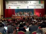Hội thảo quốc tế Tokyo về phát triển châu Phi lần thứ VI