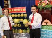 """Thừa Thiên Huế ra mắt nhãn hiệu tập thể """"Bưởi đỏ - Hương Hồ"""""""