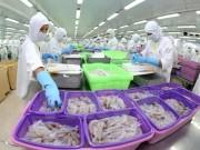 Xuất khẩu thủy sản hưởng lợi nhất nhờ FTA giữa Việt Nam và EAEU