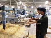 Nghệ An: 4 tỷ đồng triển khai chương trình khuyến công địa phương