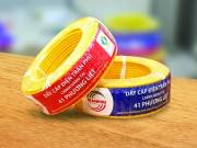 Công ty CP  Cơ điện Trần Phú: Thay nhãn mới sau khi nhận biểu trưng Vietnam Value
