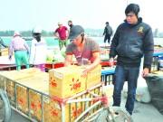 Hàng Việt vượt sóng ra đảo