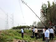 Giải quyết vi phạm hành lang lưới điện