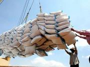 Tổng quan ngành sản xuất lúa gạo của Ghana