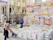 FAO dự báo lượng nhập khẩu gạo của Guinea tăng 7% trong năm 2015