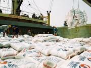 Xuất khẩu gạo của Việt Nam vào Mexico: Ảnh hưởng bởi việc tăng thuế nhập khẩu