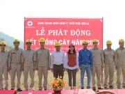 Đoàn thanh niên Thủy điện Sơn La hưởng ứng Tết trồng cây