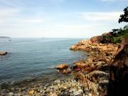 Quy Nhơn: Ngăn chặn khai thác hải sản trái phép