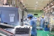 Năm 2017, đầu tư của doanh nghiệp Nhật Bản vào Việt Nam tăng 7 lần so với 2016