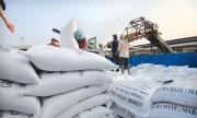 Hậu Giang đẩy mạnh xúc tiến thương mại hỗ trợ doanh nghiệp xuất khẩu